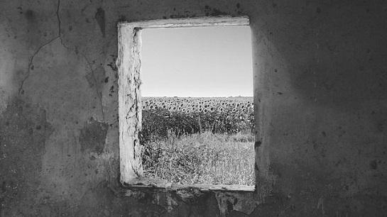 cernobila-ukrajina-free-image-pixabay