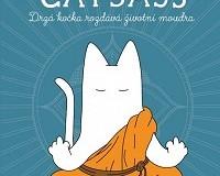 drzá kočka Catsass