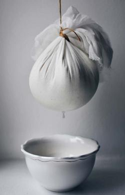 domácí jogurtový sýr