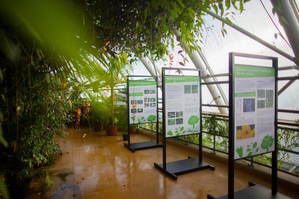Intimní život rostlin, botanická zahrada